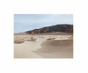 blue, plants, and desert image