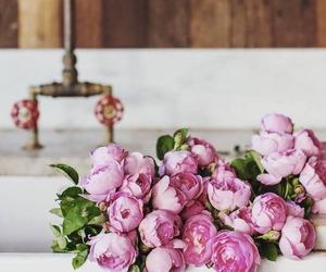 beautiful, peony, and pink image