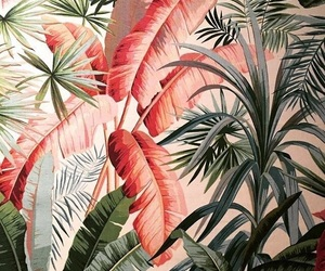 beach, tropical, and patterns image