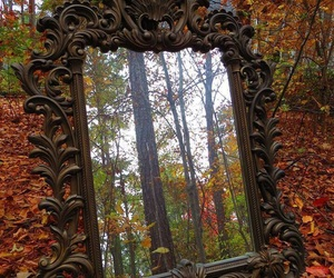 mirror, autumn, and fall image