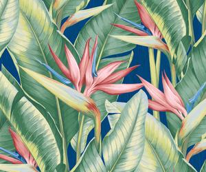 background, botanical, and jungle image