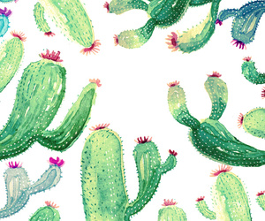 background, cacti, and exotic image