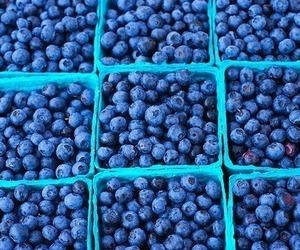 blueberry, fruit, and blue image