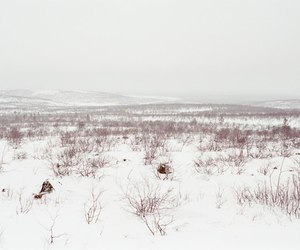 field, photo, and snow image