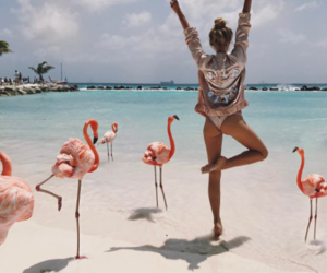 flamingo, summer, and girl image