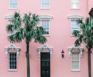 Arhitecture and pink image