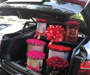 car, red, and rose image