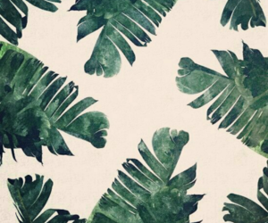 leaves, wallpaper, and background image
