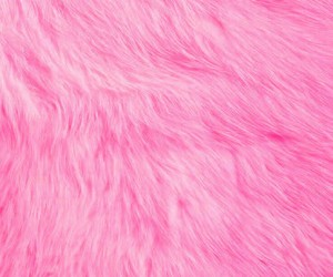 wallpaper, background, and fur image