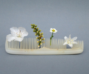 flowers, comb, and white image