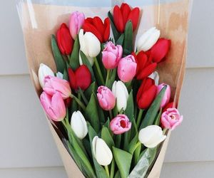 tulips, flowers, and beauty image