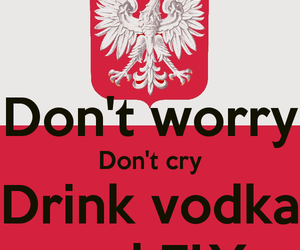 drink, fly, and vodka image