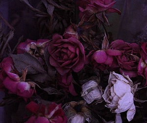 dark, flowers, and purple image