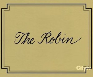 barney, how i met your mother, and the robin image