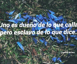 cancion, ex, and frase image