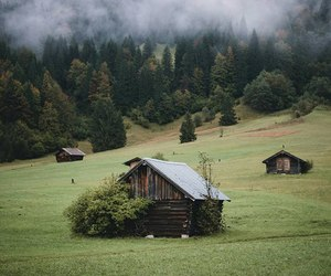 forest, green, and Houses image