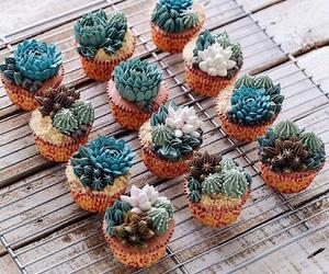 plants, cactus, and cake image