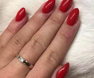 nail, nailpolish, and nails image