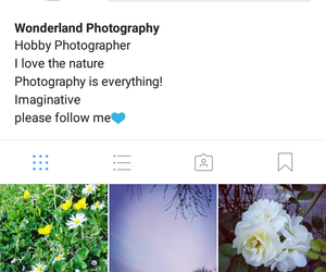 follow, photography, and follow me image