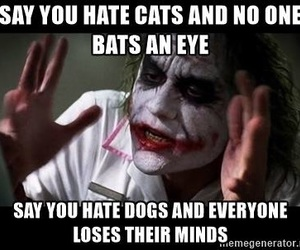 dogs, gross, and hate image