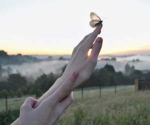 hands and butterfly image