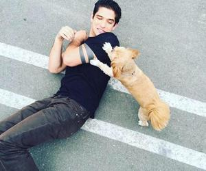 tyler posey, teen wolf, and dog image