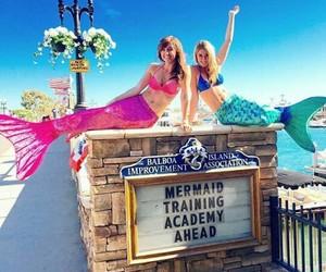 mermaids and academy mermaids image