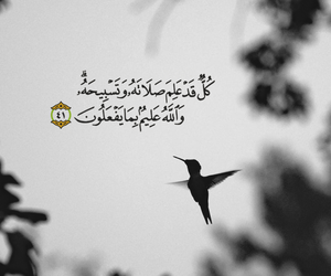 birds, deen, and قراّن image