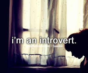 introvert, quote, and text image