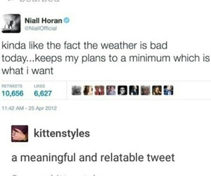 funny, twitter, and 1d image