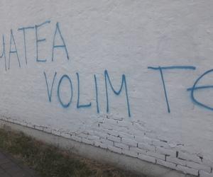 girl, grafiti, and volim te image