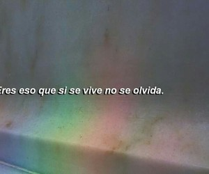 love, quotes, and olvido image