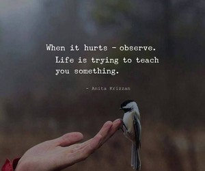 life, quotes, and hurt image