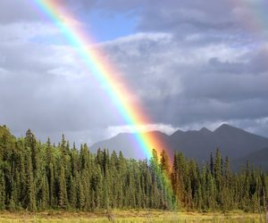mountains, rainbow, and trees image