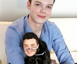 gallavich and shameless image