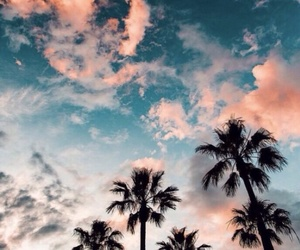 aesthetic, background, and palms image
