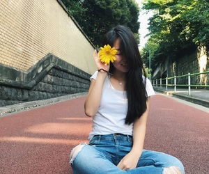 japan, picture, and sun flower image