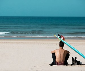 beach, dog, and portugal image
