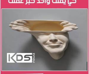dz, lol, and algerie image