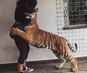 girl and tiger image