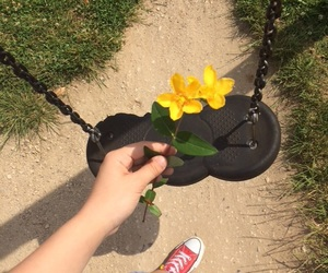red converse, sunny day, and yellow flower image