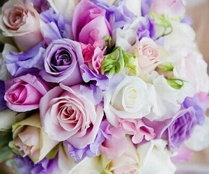 lavender and roses image