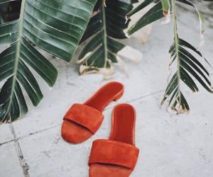 blogger, fashionista, and orange image