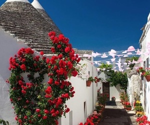 flowers, travel, and places image