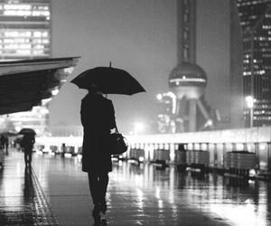 city, rain, and light image