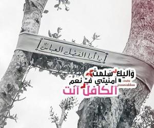 العباس, قمر بني هاشم, and ابا الفضل image