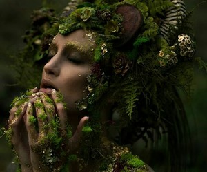 fantasy, forest, and nature image