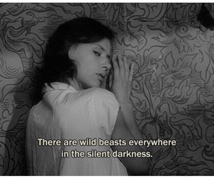 Darkness, wild beasts, and old hollywood image