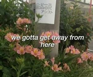 Lyrics, quotes, and Harry Styles image