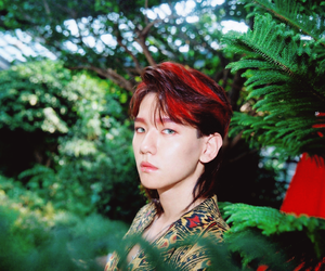 exo, baekhyun, and kokobop image